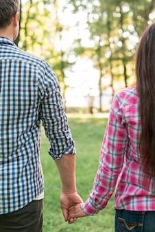 Vista traseira, de, par, passar, seu, mão, parque