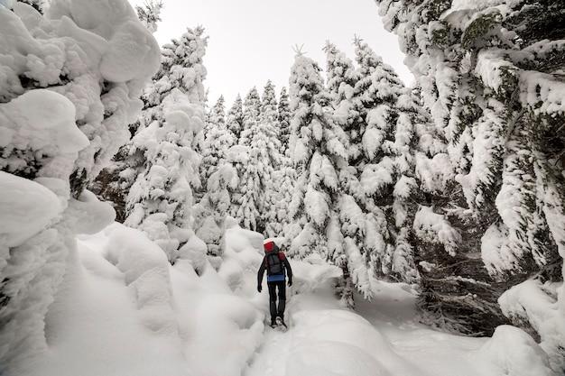 Vista traseira de turista caminhante com mochila andando na neve branca e profunda em um dia frio de inverno