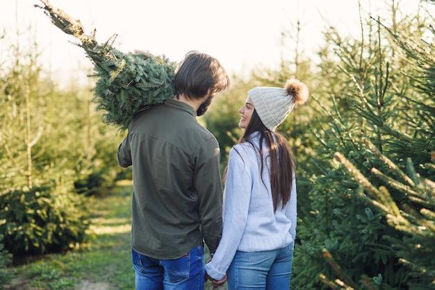 Vista traseira de um lindo casal jovem carregando uma bela árvore de natal para seu carro entre as plantações de pinheiros.