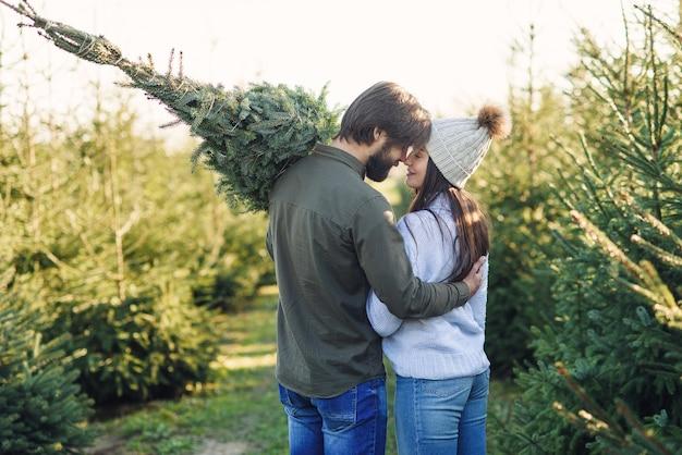 Vista traseira de um lindo casal jovem carregando uma linda árvore de natal entre as plantações de abetos