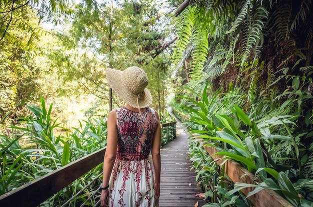 Vista traseira de uma mulher asiática viajando a pé na pista na floresta