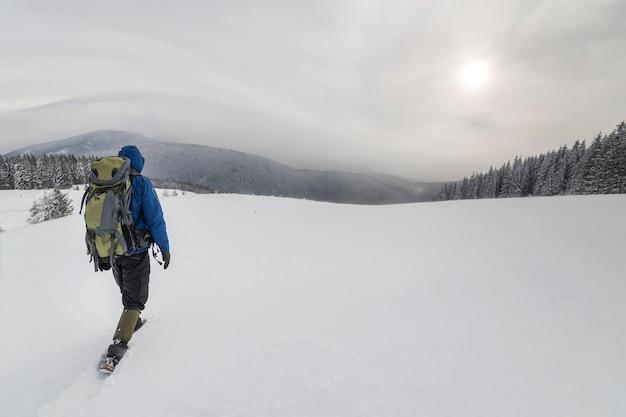 Vista traseira do caminhante do turista em roupas quentes com mochila caminhando para cima montanhas cobertas de neve na floresta de abetos e o céu nublado copie o fundo do espaço.