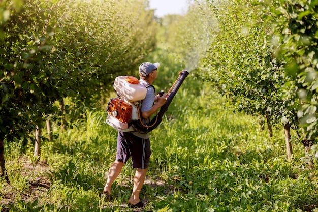 Vista traseira do camponês maduro caucasiano em roupas de trabalho, chapéu e com a moderna máquina de pulverização de pesticidas nas costas pulverizando bugs no pomar.