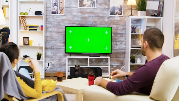 Vista traseira do casal assistindo tv na tela verde inicial, comendo pipoca e o gato olhando para eles.