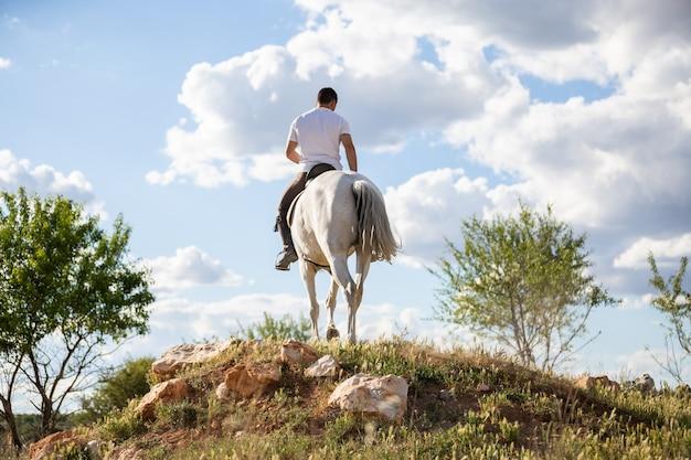 Vista traseira do jovem macho com roupa casual, andar a cavalo branco no prado gramado um dia ensolarado