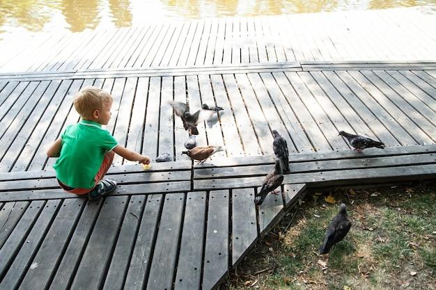 Vista traseira do menino alimentando pombos com migalhas de pão em um dia de verão no parque
