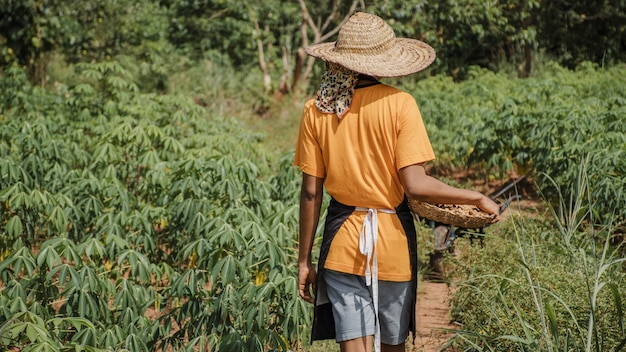 Vista traseira do trabalhador rural no campo