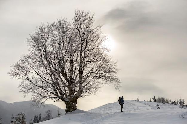 Vista traseira do turista caminhante com a mochila em pé na neve branca e limpa.