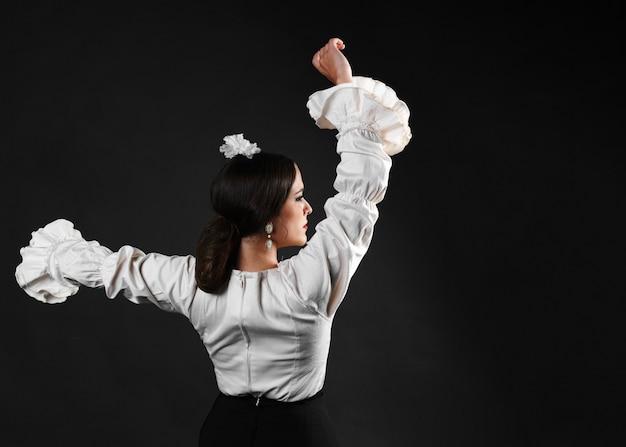 Vista traseira, flamenca, dançarino, executar