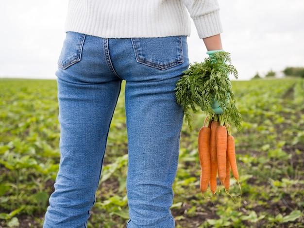 Vista traseira, mulher segura, cenouras