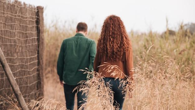 Vista traseira, par caminhando, através, campo trigo