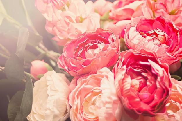 Vista turva de lindas flores desabrochando como pano de fundo.