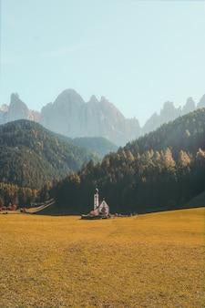 Vista vertical de um belo edifício em um campo gramado seco cercado por montanhas com florestas