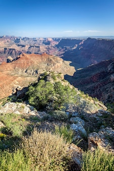 Vista vertical do grand canyon, arizona, eua