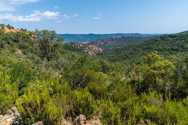 Vistas da floresta e das montanhas no maciço de