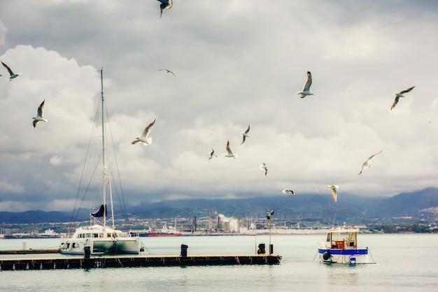 Vistas fantásticas da marina com barcos e gaivotas circulando.