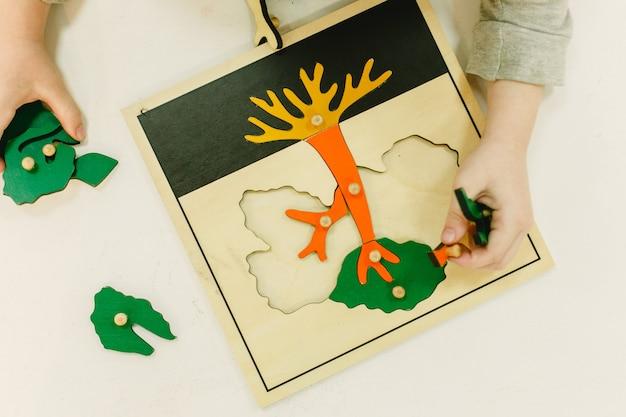Visto de cima de um quebra-cabeça montessoriano para aprender as partes de uma árvore,