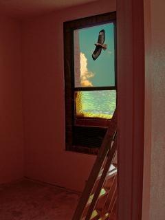 Voando pela janela