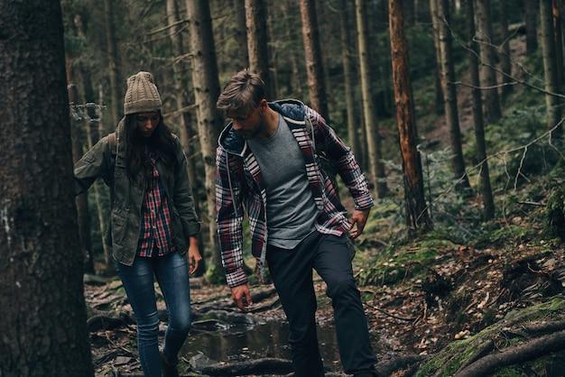 Você deve se mover com cuidado. lindo casal jovem caminhando na floresta enquanto desfruta de sua jornada