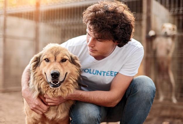 Voluntário cuidando de cachorro em abrigo