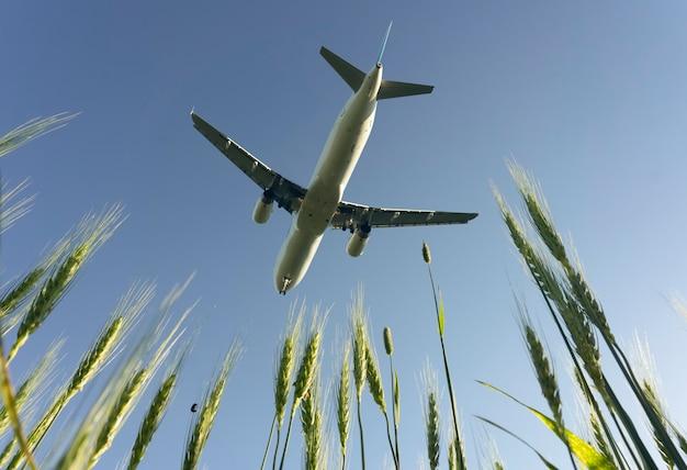 Voo de avião no céu azul de verão. decolagem ou aterrissagem de um avião de passageiros com turistas em viagem. viagem aérea e conceito de indústria de viagens. foto de alta qualidade