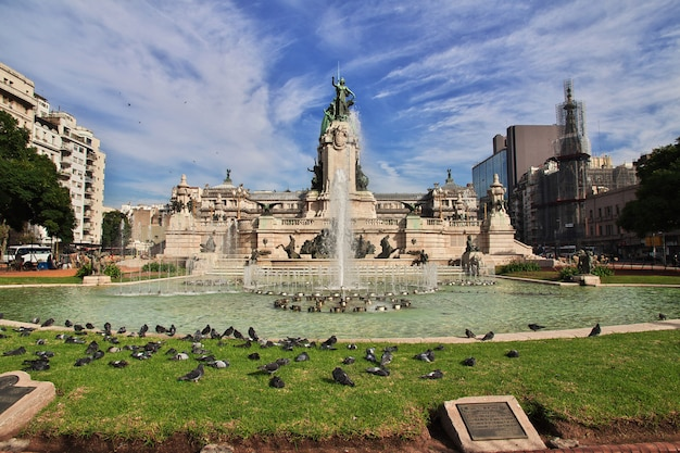 Vôo de pássaros em buenos aires, argentina