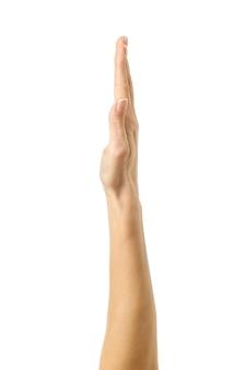 Votação ou alcance com a mão levantada. mão da mulher com manicure francesa gesticulando isolado na parede branca. parte da série