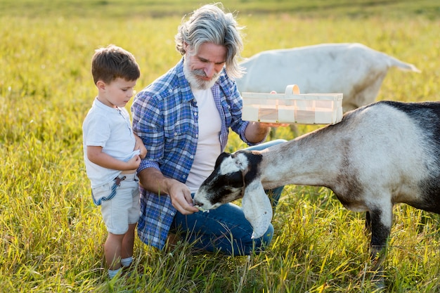 Vovô e garotinho alimentando cabra