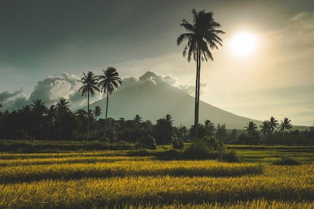 Vulcão mayon na ilha de luzon, filipinas