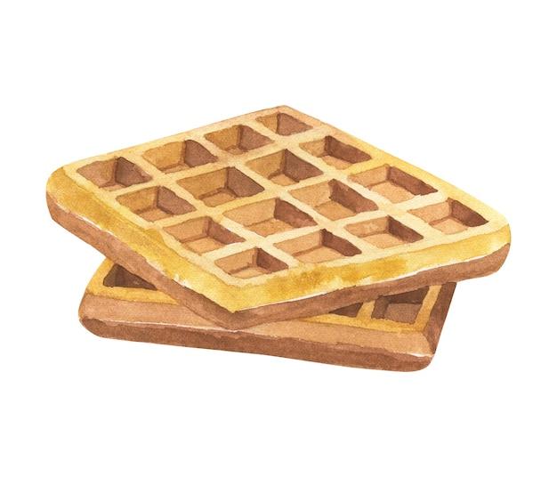 Waffles belgas. mão-extraídas ilustração em aquarela. isolado.