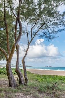 Waimanalo beach no lado de barlavento de oahu