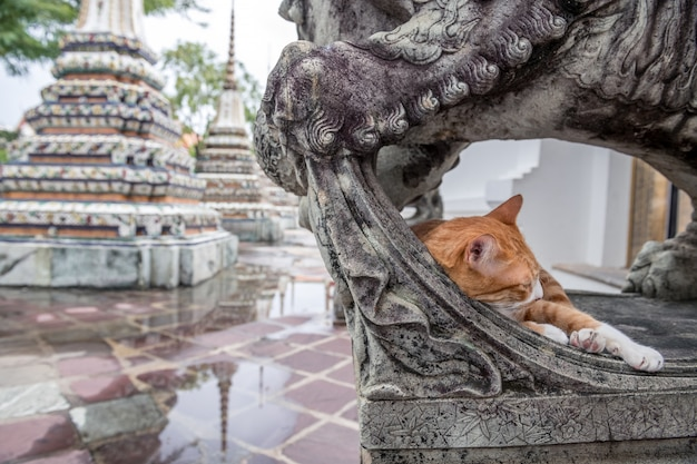 Wat phra chetuphon wimon mangkhalaram ratchaworamahawihan