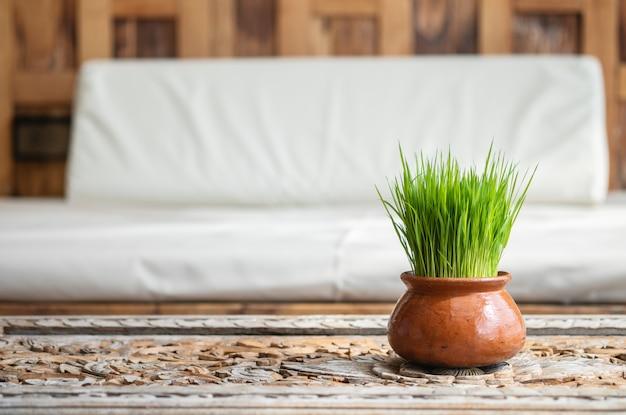 Wheatgrass closeup verde no pote na mesa de madeira com textura de fundo