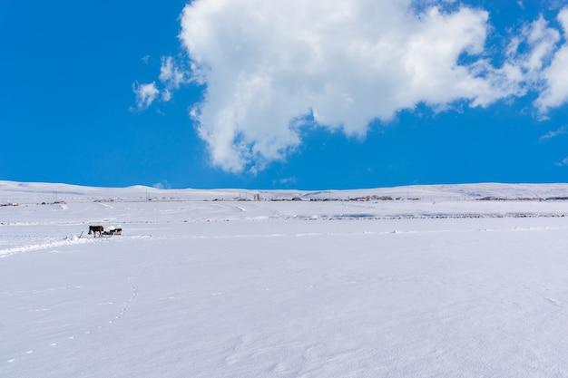 Winter village, kars - turquia