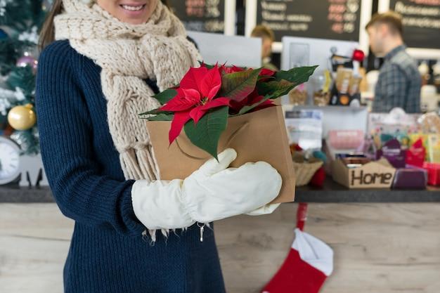 Womans mãos em luvas de inverno com flor de natal poinsettia vermelho