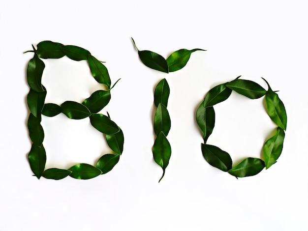 Word bio feito com folhas naturais