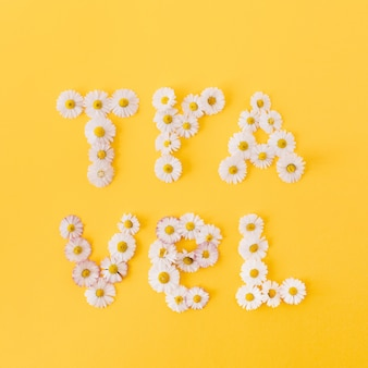 Word travel feito de botões de margarida de camomila em amarelo