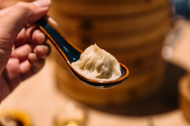 Xiao long bao (sopa de bolinho de massa) na colher