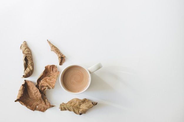 Xícara branca com cacau café na mesa branca isolada com sombra suave e folhas secas de nogueira marrom.
