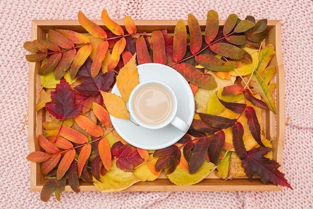 Xícara de café com leite e folhas variegadas coloridas na bandeja de madeira na manta de malha rosa. outono aconchegante.