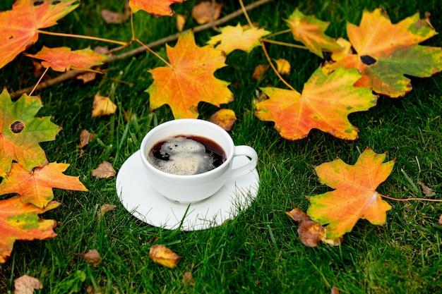 Xícara de café e folhas de bordo em uma grama verde em um jardim