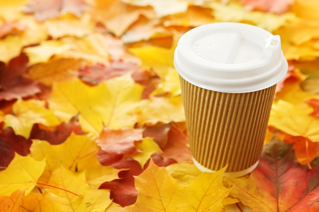 Xícara de café em bordo de outono colorido deixa. brincar. copie o espaço