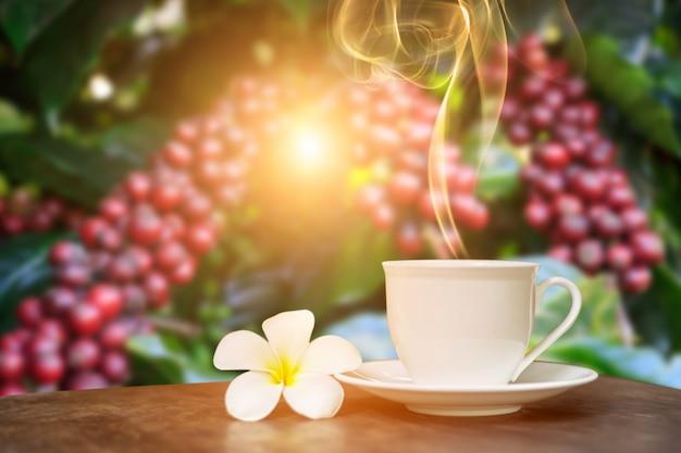 Xícara de café quente com decoração de flor branca na mesa sobre o fundo de plantações de café