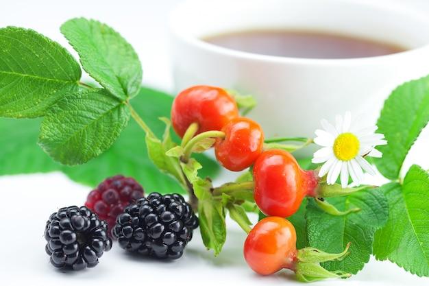 Xícara de chá, amora, framboesa e rosa mosqueta bagas com folhas
