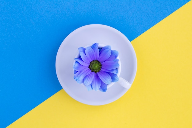 Xícara de chá branca com flor azul no centro da mesa multicolorida. vista do topo.