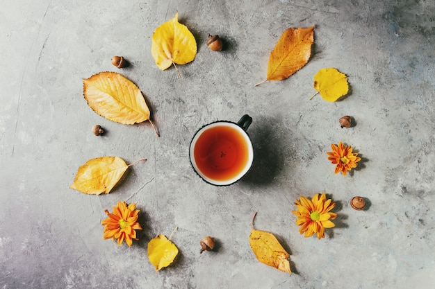 Xícara de chá com folhas de outono