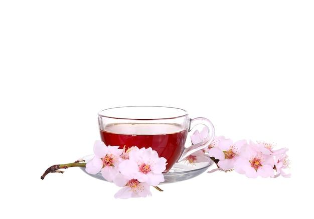 Xícara de chá com um raminho de flores de cerejeira, isolado no fundo branco.