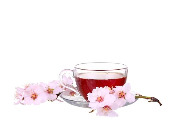 Xícara de chá com um ramo de flores de cerejeira isolada na superfície branca