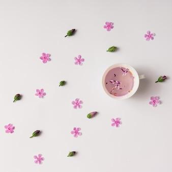 Xícara de chá de ervas com flores e botões. postura plana.