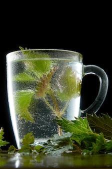 Xícara de chá de urtiga medicinal com folhas de urtiga e pó de água no preto